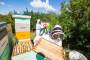 Pčelarstvo kao perspektivna grana