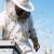 Hrvatska pčelarska služba 112 od sada djeluje pod pokroviteljstvom Grada Varaždina