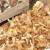 Gljive iz BiH sve traženije u inostranstvu zbog svog kvaliteta i jedinstvenosti