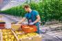 Novi zakonski propisi u eko poljoprivredi?