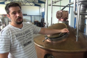 Sandi Mance: Majstor pivar se s raznim sortama hmeljeva može igrati na sto različitih načina