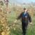 Zulum: Najveća mana uzgoja lješnika je nesiguran otkup