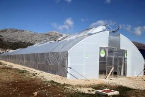 Vjetar uzrokovao veliku štetu u rasadniku mediteranskog bilja