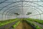 Zaštićeni prostori za stabilnost proizvodnje