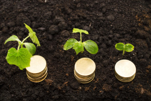 Za podsticaj poljoprivrednika između 180 i 200 miliona KM