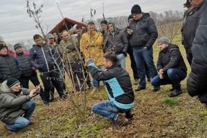 Predavanje o eko proizvodnji lijeske i pokazna rezidba u Slatini