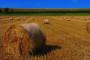 Poljoprivrednici zadovoljni sastankom s ministrom Jakovinom