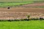 Projektom kontrole onečišćenja u poljoprivredi isplaćeno 12,5 milijuna kuna