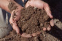 Poljoprivrednici bez svog zastupnika u EU parlamentu