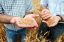 Težak put do tržišta poljoprivrednih proizvoda