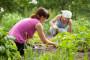 Poljoprivrednici kao samostalni obrtnici?