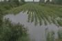 Zbog poplave uvoziti ćemo sirovine