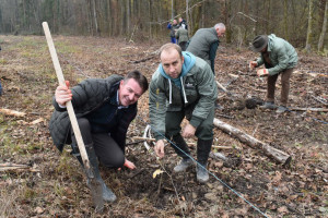 Mrežasta stjenica, gljiva, a sad i korona virus ugrozili naše šume, najviše jasen