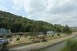 Više od 13.000 novih stabala u širem centru Užica