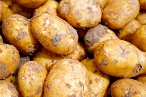 Ostali bez godišnjeg roda krompira jer ne znaju upravljati rijekama?