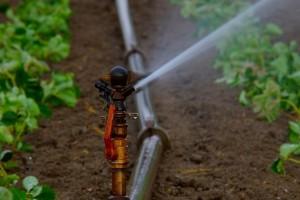 Isplaćeno 916.254 KM poljoprivrednicima za nabavku opreme za navodnjavanje