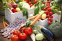 Elektronska certifikacija organskih proizvoda
