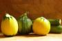 Uzgoj povrća i voća ima velik potencijal rasta
