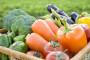 Lažna organska hrana širi se Europom