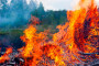 Mobilizirajte Fond solidarnosti za štete od požara!