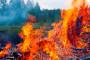 Potrebna veća angažovanost protiv požara i suša