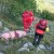 Nesvakidašnja akcija HGSS-a: Spasili ranjenog i iznemoglog prasca!