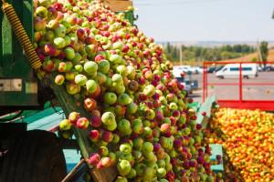 Isplaćeno svih 10,4 miliona KM za dugoročni razvoj u poljoprivredi