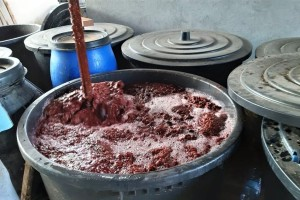 Sav rod kruške, šljive i jabuke u rakiji - cilj prerada 100 tona voća