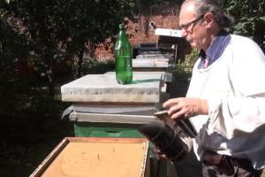 Krajnje je vrijeme za prihranu pčelinjih zajednica