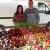 Vukovići krenuli s drvenim plastenikom - danas uzgajaju cvijeće za svačiji ukus i džep