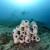 Lidia Boševski: Projektom Mare Modul kreirani domovi za razne morske organizme