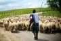 Poljoprivrednici najavljuju protest ispred Vlade