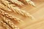 Vlada izvoznim carinama protiv poskupljenja hrane