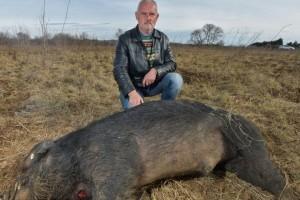 Miodrag Orešković: Svinje su mi bile i terapija, teško me pogodio prizor koji sam zatekao