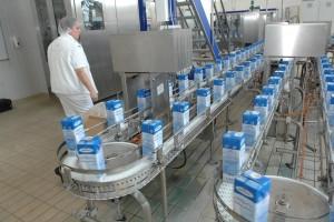 Fina: Mljekari i proizvođači sira, izuzev Megglea, pet godina uzastopno ostvarili neto dobit