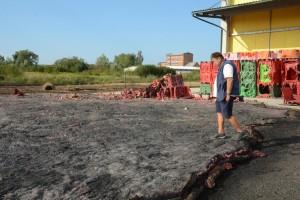 Požar u skladištu jabuka, izgorjelo 7.000 paleta