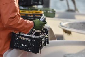 Ribari zbog pandemije zatražili nastavak mjera pomoći sektoru