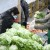 Cijene hrane će sve više rasti, samodostatnost u proizvodnji nam je nužna
