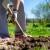 Mjesec mart donosi radove u vrtu i voćnjaku