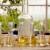 Kvalitetna rakija od šljiva: Muljanje, temperatura, destilacija