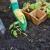 Kako uspješno uzgajati papriku i rajčicu na malim površinama