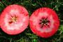 Jabuka jedinstvene arome