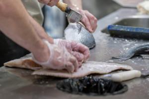 Zaposlili 120 žena u Fabrici za preradu ribe u Živinicama, planiraju još 200