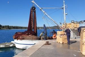 Inovacije u ribarstvu: Objavljeni su natječaji za mjere I.I i II.I