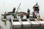 Ribarstvo u BiH polako, ali sigurno tone