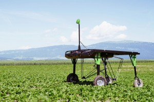 Robot za uništavanje korova smanjuje upotrebu herbicida za 20 puta