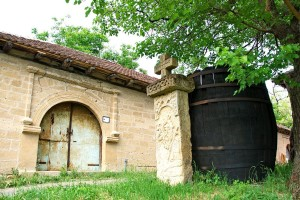 Negotinska Krajina: Novi zasadi vinove loze zbog sve veće tražnje za vinom