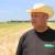 Ovogodišnju žetvu pšenice izgubili smo već u kvalifikacijama, dotuklo nas vrijeme i manjak mehanizacije