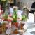 Integralna proizvodnja za Rumski ceger