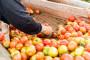 Rusija - oštrija kontrola turskih prehrambenih proizvoda